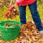 6 Reasons Fall is the Best Time for Lawn Fertilization Services