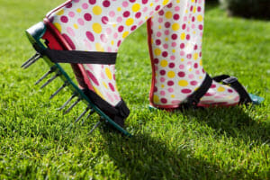 What Professional Lawn Maintenance Companies Will Tell You about Core Aeration