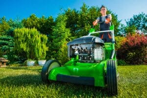 professional yard services