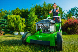 What Should Be Included When You're Paying for Professional Yard Services?