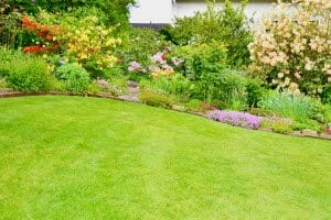 Alpharetta Lawn Care Services