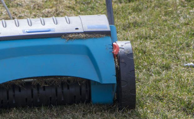 Best Time For Lawn Aeration
