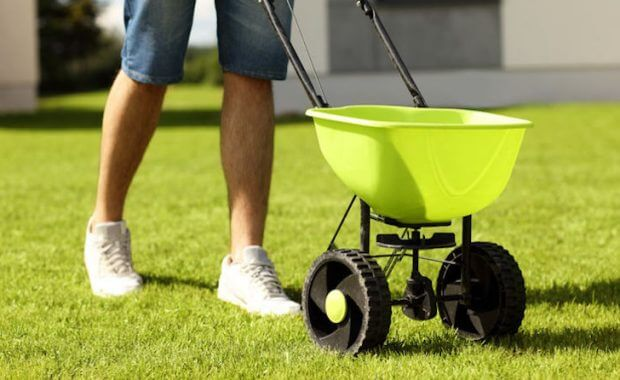 overseeding your lawn in the fall